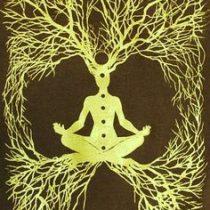 Logo del grupo El Árbol Cósmico- Anatomía Bio-Espiritual