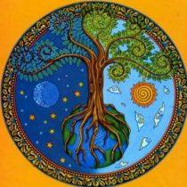 Logo del grupo ECOrrección – Regeneración ecológica